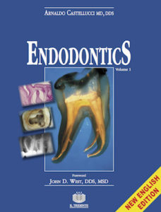 Download Endodontics Vol. 1 - Arnaldo Castellucci